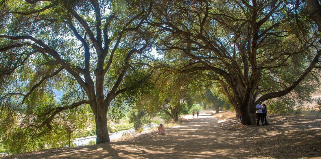 Malibu Creek State Park